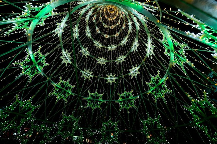 albero-verde-interno