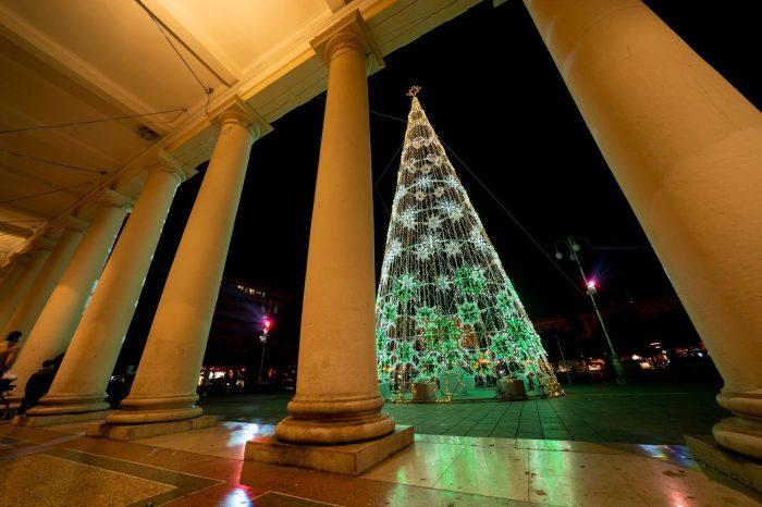 colonne-albero-verde
