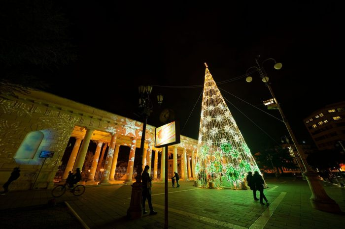 piazza-albero-verde